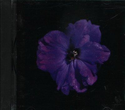 八八 - MY CRESCENT LOVE CLUE 4 NIGHT BCM -日版 TLC RASHIF U.G.K.