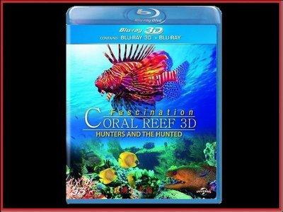 【BD藍光3D】魅力珊瑚礁:獵人和獵物 3D/2D版Fascination Coral Reef(台灣繁中字幕)