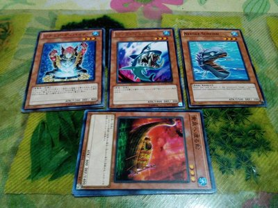 遊戲王卡,請選擇。