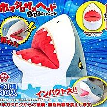 【一手動漫】 日本正版 景品  鯊魚頭 娃娃 布偶