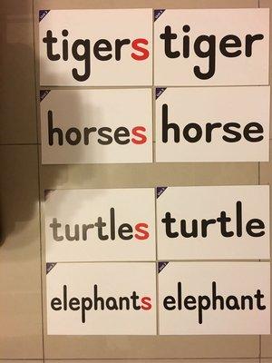小學教室教學教具·彩色圖卡·動物篇·單數·複數相關英文單字·教室佈置 素材·班級 利器·課堂上課活化教具·尺寸A4大小·厚紙卡·可重複 ·總計16張