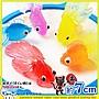 玩具 HH婦幼館 玩具 日本廟會 夜市 撈魚 遊戲 金魚 單隻【1F300X712】