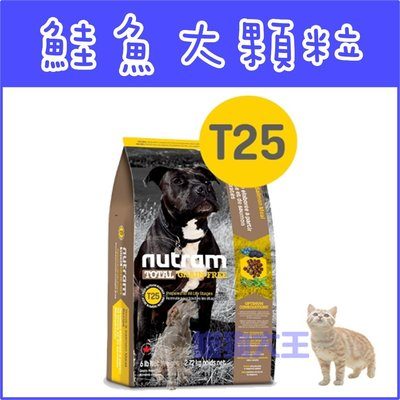 **貓狗大王**【贈200元禮卷】紐頓nutram/無穀全能-潔牙犬 鮭魚配方T25/2.72kg