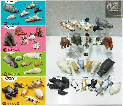 【神經玩具】現貨 T-ARTS 扭蛋 ZOO休眠動物園 大全套 1+2+3+4彈合賣 一套24種 熊貓之穴 轉蛋