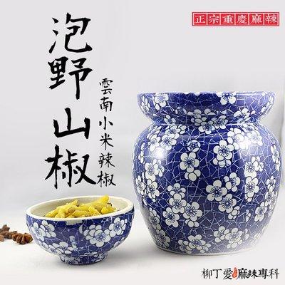 柳丁愛☆泡小米辣椒 五公斤袋裝【A095】中辣鹹味 老罈泡椒 泡菜