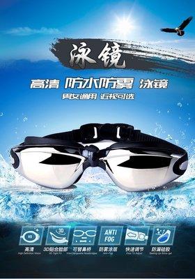 《台灣現貨24HR出貨》振亞 成人電鍍平光耳塞泳鏡