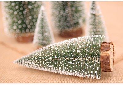 20公分可愛小聖誕樹**針葉松樹
