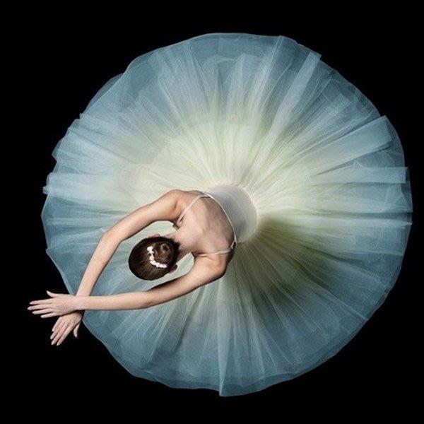 5Cgo【鴿樓】會員有優惠 42410336123 芭蕾舞蹈裙成人芭蕾舞蹈紗裙白蓬蓬裙天鵝湖演出表演比賽芭蕾舞裙