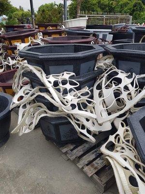 台中市 信東行 園藝材料 水泥花盆 八角形2尺6  77x45公分 台中市