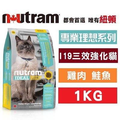COCO《夏季回饋》紐頓I19三效強化貓(雞肉+鮭魚)1kg 亮毛護膚&腸胃敏感/天然成貓飼料