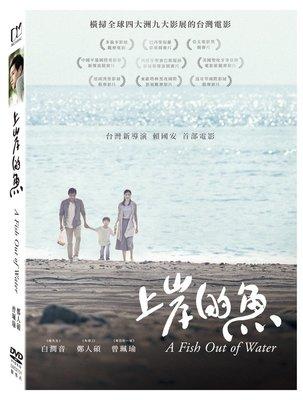 (全新未拆封)上岸的魚 A Fish Out of Water DVD(得利公司貨)