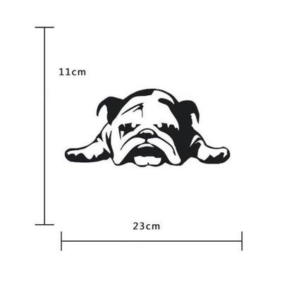 1個 English Bulldog Tired Puppy Dog車貼 英國累的小狗狗車貼 精美防水貼紙 車貼 【愛 軒】