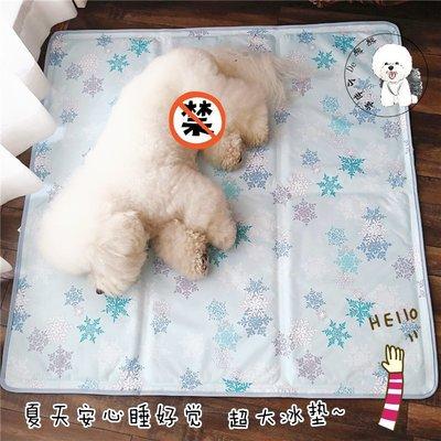 COCO寵物精品 EQUAL PETS天然水凝膠寵物防暑涼墊寵物貓狗狗EP冰墊防抓耐咬無毒