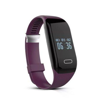 計步 卡路里 心率智慧手環 手錶 支援 來電顯示 短訊 IP69防水 安卓蘋果兼容 預購