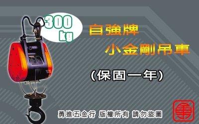 自強牌 300KG 小金鋼吊車 鋼索式 電動吊車 高樓小吊車 捲揚機 DUKE 基業牌 小金剛 DU-300AS
