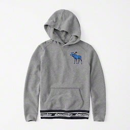 a&f真品abercrombie&fitch exploded icon hoodie大麋鹿刺繡連帽T