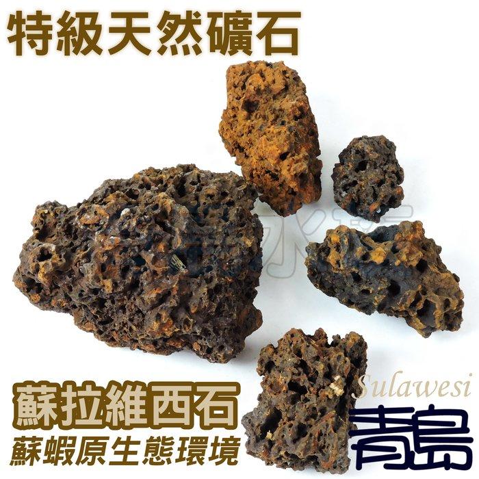ME。。。青島水族。。。特級天然礦石-蘇拉維西石 蘇拉威西石 蘇石 造景 繁殖 躲藏 蘇蝦水晶蝦螯蝦水草==1g