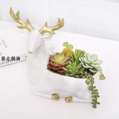 精選 北歐創意幾何動物多肉花盆微景觀植物個性花盆栽桌面多功能收納盆