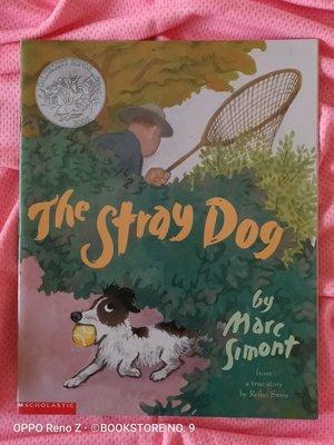*NO.9 九號書店* The Stray Dog 英文繪本童書 SCHOLASTIC