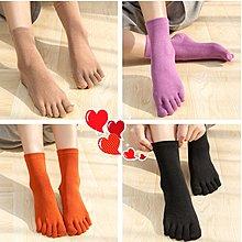 【berry_lin107營業中】經典純色女士棉五指襪五指襪中筒棉女卡通可愛五指襪女