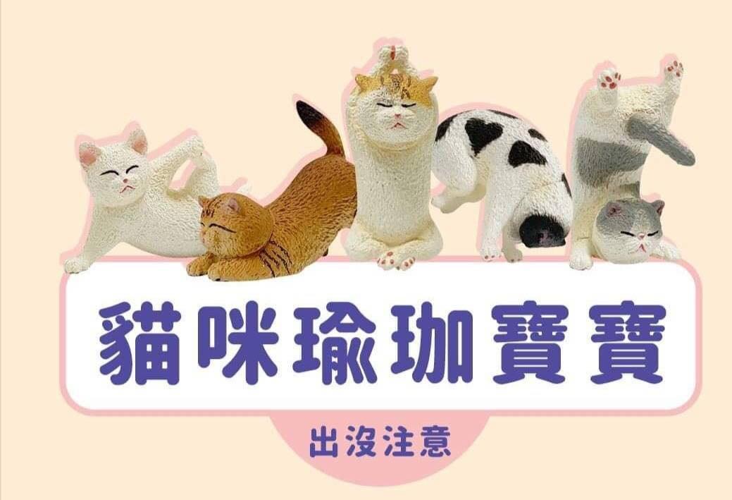 逢甲 爆米花 全新 特價 轉蛋 扭蛋 研達國際 Animal Life 貓瑜珈寶寶 貓瑜珈 貓 公仔 全5種