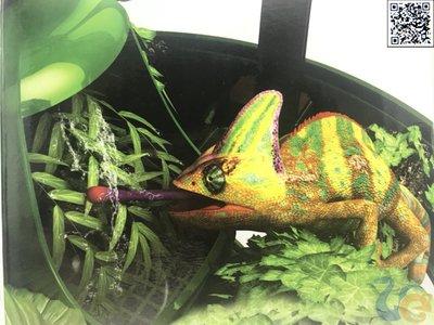 【有魚兩棲爬蟲】REPTIZOO 爬蟲泉水器
