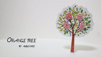 Orange Tree by Hugo Choi