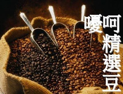 ~嚘呵咖啡~ 咖啡豆的DNA代表廠商-嚘呵精選豆(半磅)