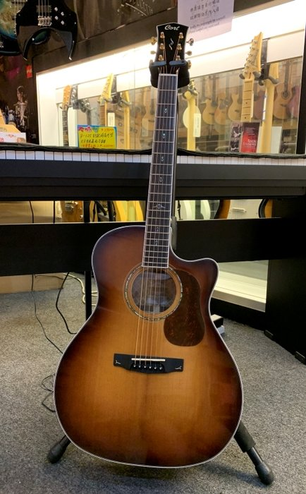 【名人樂器】Gold A8 Guitar 雲杉木 全單 民謠吉他 側背玫瑰木 可插電