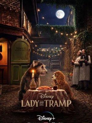 電影現貨《小姐與流浪漢 Lady and the Tramp(真人版)》