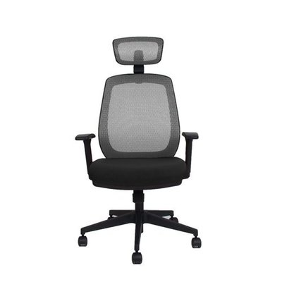 【BNS居家生活館】台灣製BACKBONE-BEAR人體工學椅/辦公椅/椅子