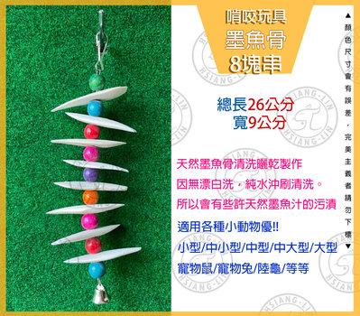 *中華鳥園*寵物墨魚骨串玩具-8塊串 /磨嘴/補鈣/啃咬/寵物