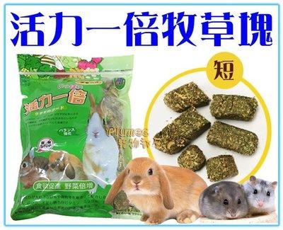 【Plumes寵物部屋】活力一倍《牧草塊-短》800g-小寵物用牧草磚/磨牙磚-適合兔子、天竺鼠、土撥鼠【可超取】