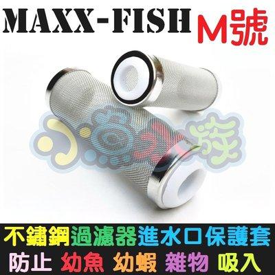 【小魚水族】【MAXXFISH、不鏽鋼進水口濾網保護套、M號】不鏽鋼炸彈頭、入水口保護套、濾網頭、防止幼魚幼蝦吸入