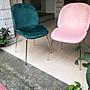 【 一張椅子 】水金金 貝殻華麗餐椅...
