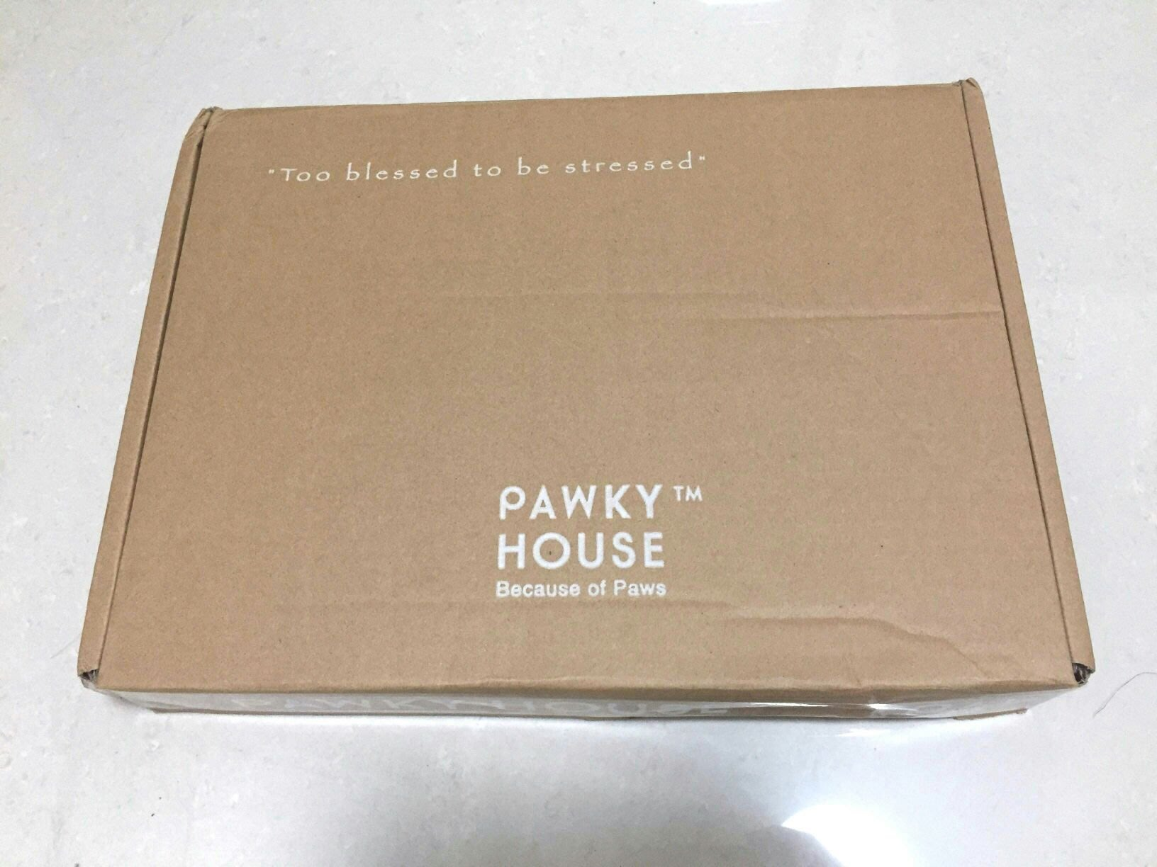 PAWKY HOUSE 法鬥黃色雨衣
