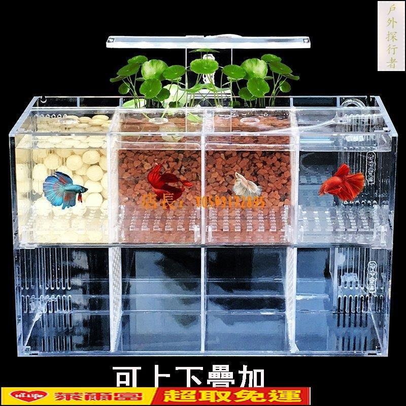 【免運】鬥魚缸孔雀魚繁殖盒孵化隔離盒亞克力桌面魚缸幼魚生態創意水族箱