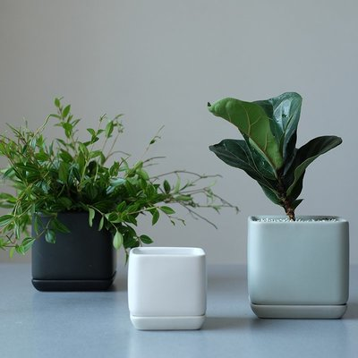 設計款正方形黑色灰色白色綠色帶底托帶孔土培植物家居辦公室花盆