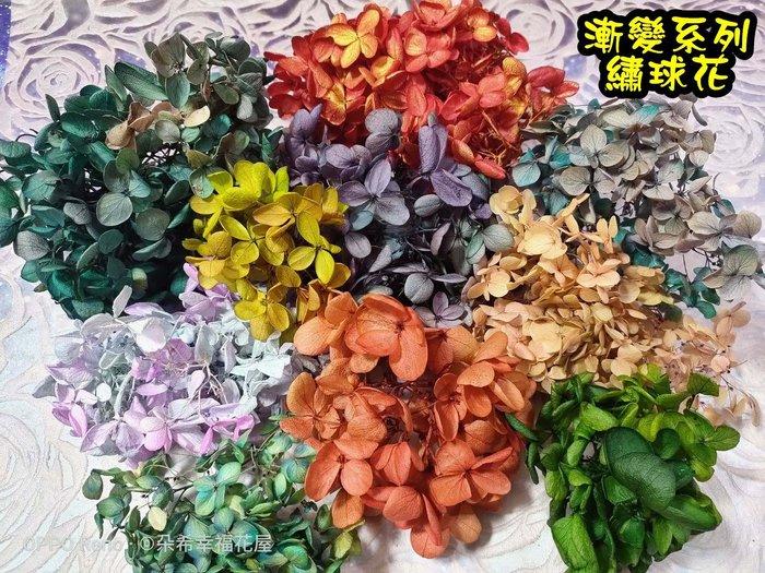 進口 繡球花  綉球花 大份量下標區 不凋花 乾燥花束 花圈 手腕花 Diy花藝 漸變色系 素材 永生花 朵希幸福烘焙