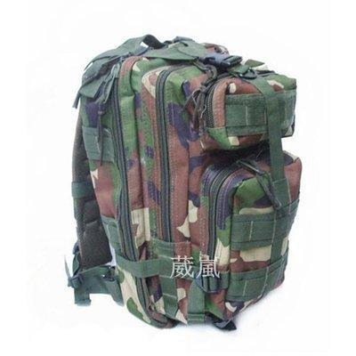 MOLLE 3P 背包 叢林迷彩( 槍盒 槍箱 槍袋 槍包 旅遊 登山 烤肉 露營 槍包 書包 生存遊戲 軍事風 迷彩