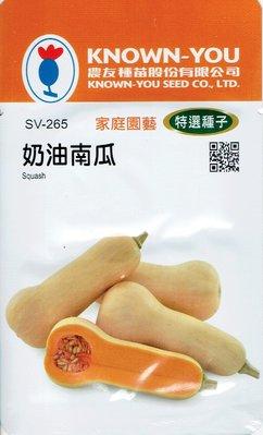 奶油南瓜(Squash) sv-265 每包約7粒 農友種苗特選種子