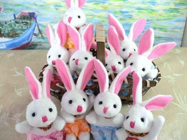 超Q柔軟夏威夷兔~結婚禮小物二次進場送客禮品公仔周年慶贈品生日分享禮 團購貨到付款