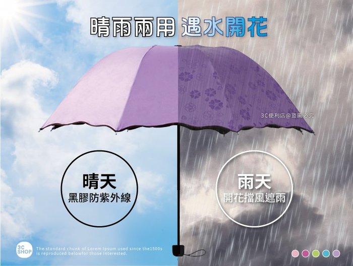【99元】遇水開花傘直購價 新款日本進口加厚三層黑膠遇水開花傘、降溫傘、晴雨傘、抗UV,100%阻隔紫外線!