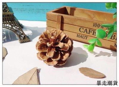 乾花 園藝裝飾 diy裝飾 干花松果天然裝飾擺件圣誕樹掛件美國大松果橡果復古道具