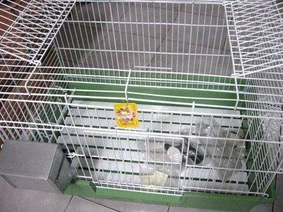 ☆汪喵小舖2店☆ 特價 兔專區-皇冠2尺半兔籠 // 附食盆、飲水頭、牧草架