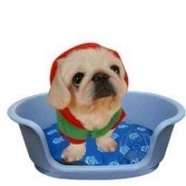 【🐱🐶培菓寵物48H出貨🐰🐹】ACE PET》綺麗夢寵物窩 (S)‧顏色隨機出貨 特價266元