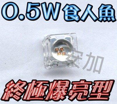A4A41 買1送1 終極爆亮0.5W 凸平頭-食人魚LED 四晶片 many.G5.GSR.新勁戰.GTR.CUXI