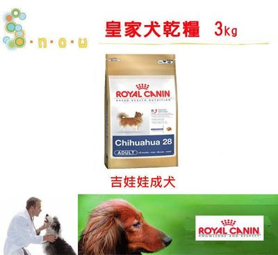 ☆SNOW的家☆法國皇家 PRC28吉娃娃成犬3kg(80070410