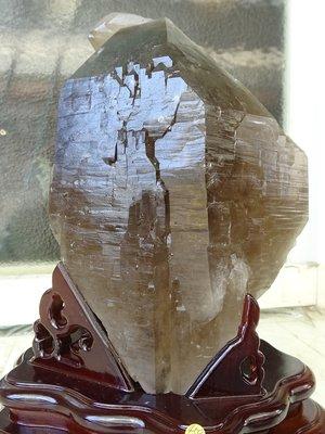 ~shalin-crystal~巴西鱷魚骨幹水晶~4.59公斤~完整度高~除穢聚氣~化煞聚財~低價起標!