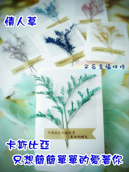 6色 現貨供應 卡斯比亞 乾燥花 卡片 萬用卡 手工卡片 畢業 感恩卡 生日卡 拍照道具 不凋花 朵希幸福烘焙